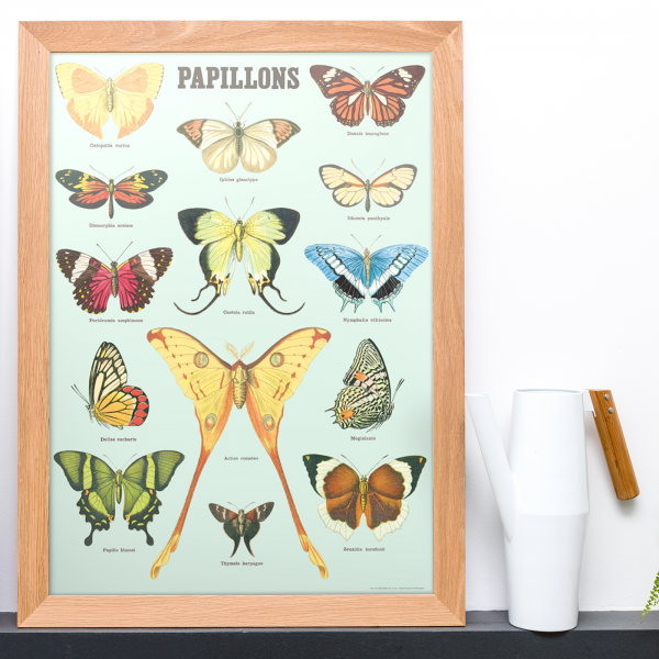 Large print - Butterflies (v.2)