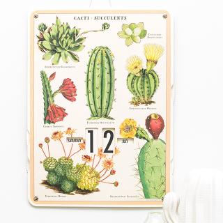Perpetual calendar - Cactus & succulentes
