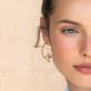 Hoop earrings - Swallow