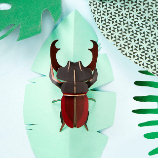 Studio ROOF deco - Small insect (stag beetle)