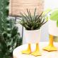 Planter - Duck feet (small)