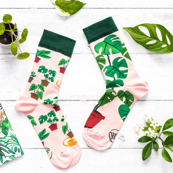 Many Mornings socks - Plant lover