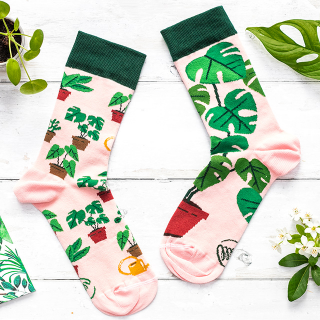 Many Mornings socks - Plant lover