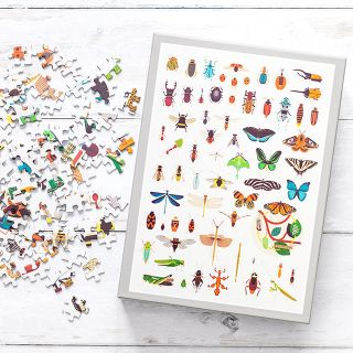 Cloudberries jigsaw puzzle - Insects