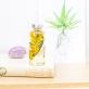 Plant in a bottle - Slow Pharmacy (Specimen 20)