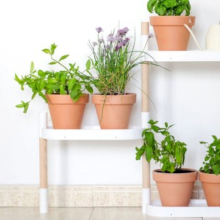 Self-watering 4-tray plant shelves