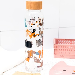 Glass water bottle - Cats