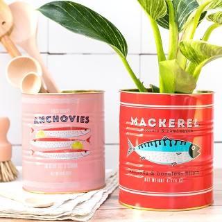 Storage tin set - Anchovies & mackerel