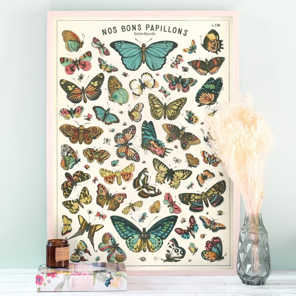 Large print - Butterflies