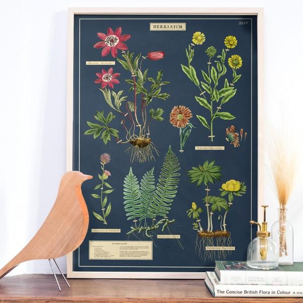 Large print - Pissenlit