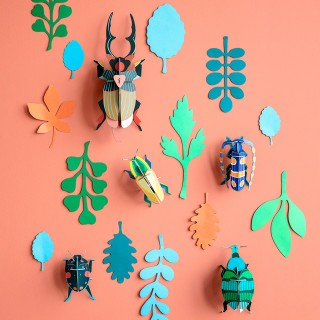Studio ROOF deco - Wall of curiosities (beetle antiquary)