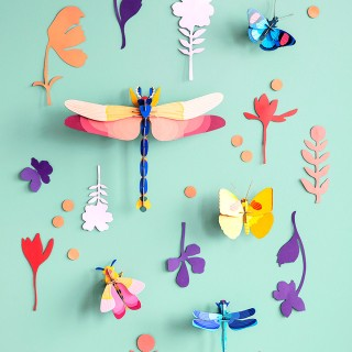 Studio ROOF deco - Wall of curiosities (insect connoisseur)