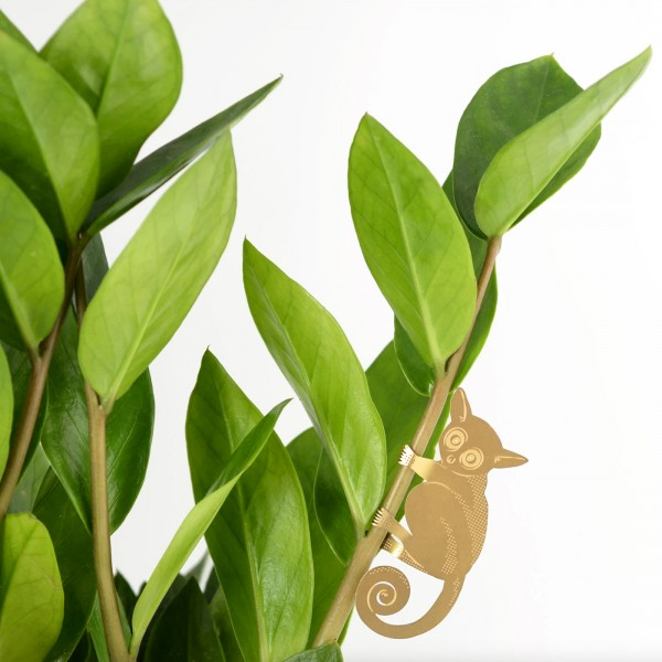 Plant accessory - Plant animals (bush baby)