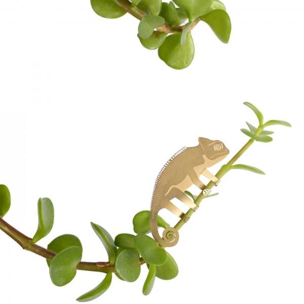 Plant accessory - Plant animals (chameleon)