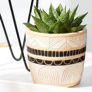 Planter - Sgraffito