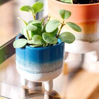 Small planter - Mojave (blue)