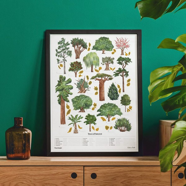 Large poster - The Chartologist (birds)