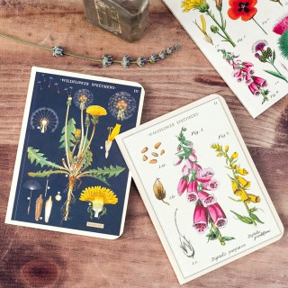 Mini notebooks - Wild flowers