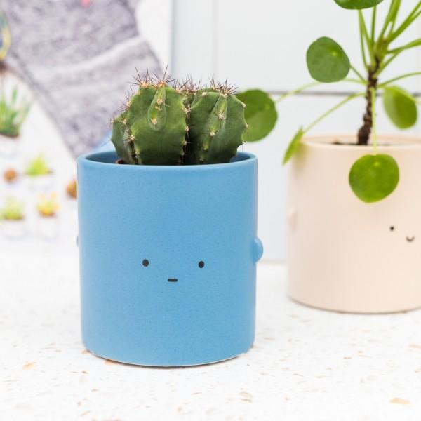 Plant pot - Toki (blue)