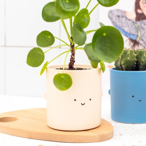 Plant pot - Toki (cream)