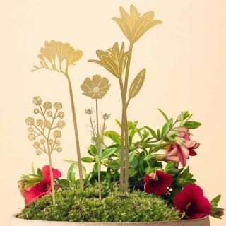Plant accessory - Bloom garden