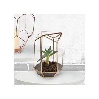 Brass graphic terrarium