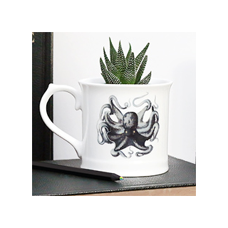 Curios mug - octopus