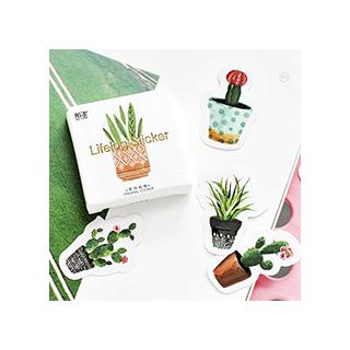 Stickers - cactus