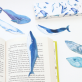 Whale bookmarks