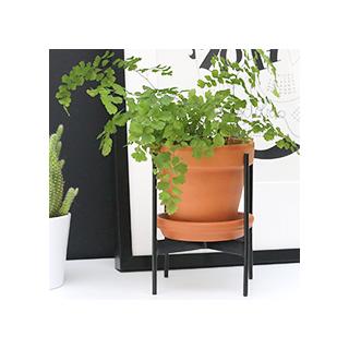 Porte-plante