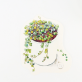 Cartes succulentes