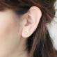 Yucca ear climbers