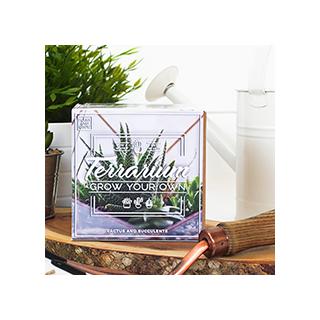 Sow & grow - terrarium