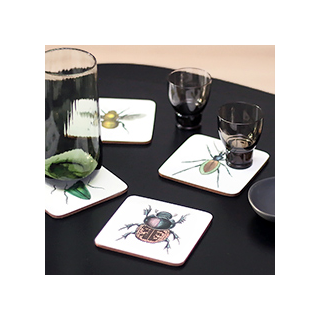 Curios coasters - insectes