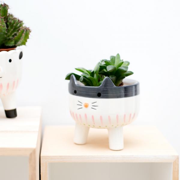 Animal flower pot - chat