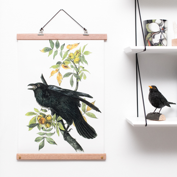 Affiche botanical - corbeaux