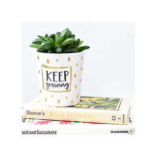 Keep growing planter